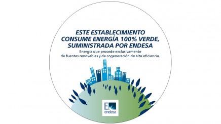 Endesa suministrará energía 100% verde a Itconic