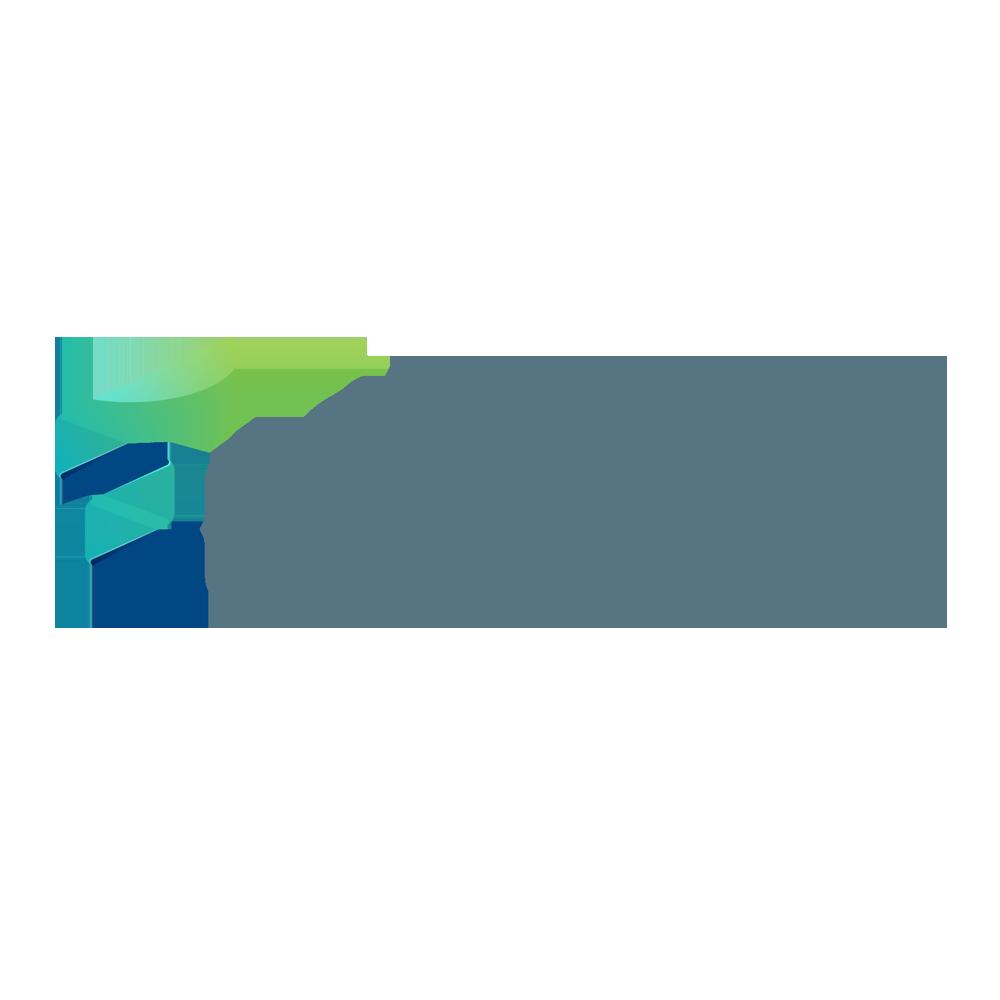 Techedge Group