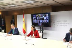 La Comisión Plenaria de la Red DTI, presidida por S.M. el Rey Felipe VI
