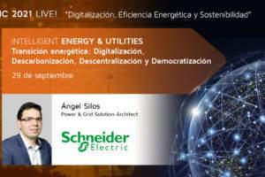 Modelización de la red para la adaptación a la Transición Energética