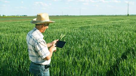 La revolución tecnológica y sostenible del sector agroalimentario